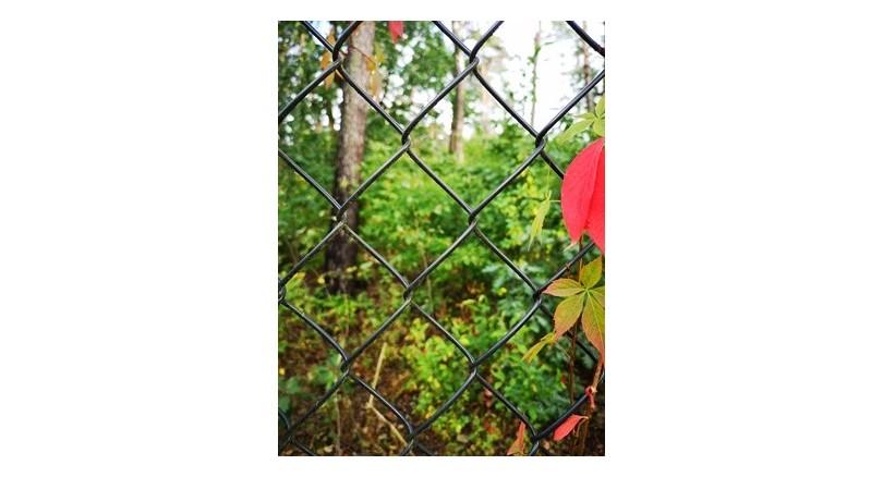 Tanie ogrodzenie działki rekreacyjnej